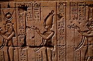 Egypt. Edfu - Horus temple in Edfu. Dedicated to Horus, the falcon headed god, it was built during the reigns of six Ptolemies  Edfou  Egypt    /  temple du dieu Horus a Edfou, construit sous Ptolemee III. Dynastie PtolemaIque   Edfou  Egypte   /  L0056007