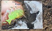 La riserva naturale di Capo Gallo devastata dall'incendio quasi certamente doloso del 16 giugno, l'insegna della riserva bruciata.<br /> The nature reserve of Capo Gallo In Sicily destroyed by an arson: the burnt sign with the map of the reserve.