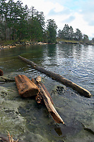Driftwood on the shore at Drumbeg Provincial Park Gabriola British Columbia Canada