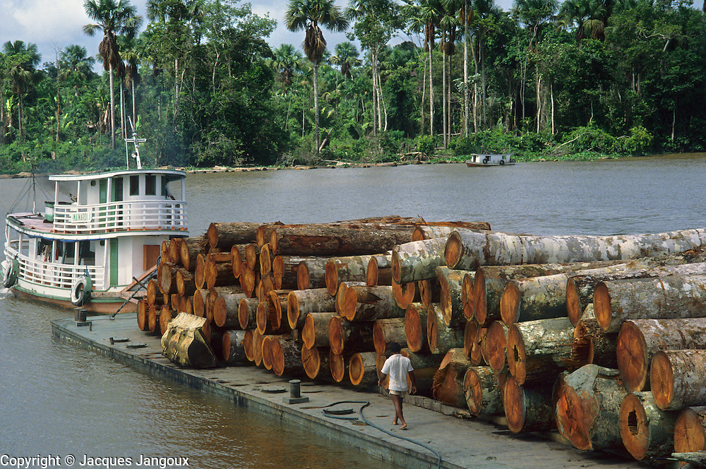 Deforestation: barge loaded with logs in Amazon estuary, Marajo Island, Para, Brazil