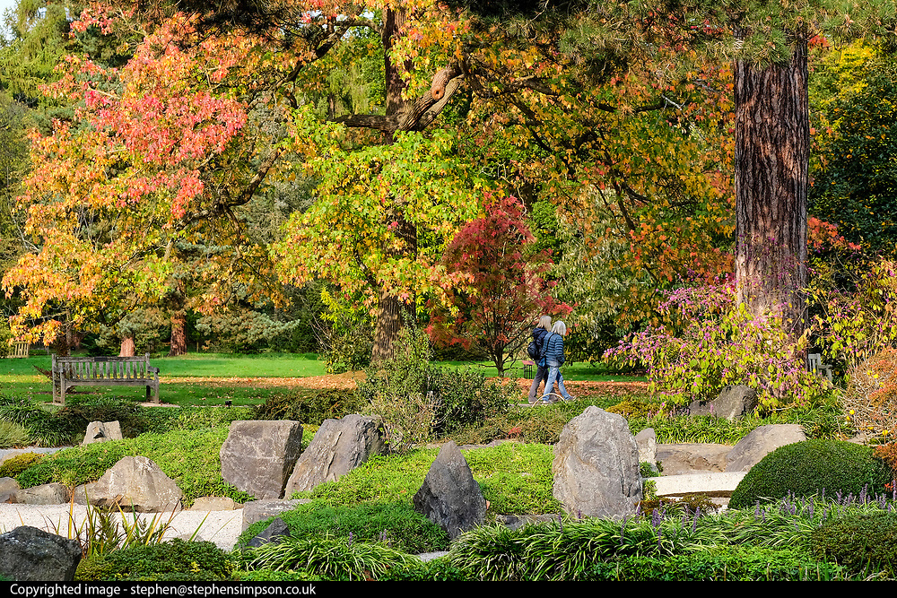 © Licensed to London News Pictures. 17/10/2017. London, UK.  Visitors walk in autumn colour in the Japanese Garden in Kew Gardens today 17th October 2017.  Photo credit: Stephen Simpson/LNP