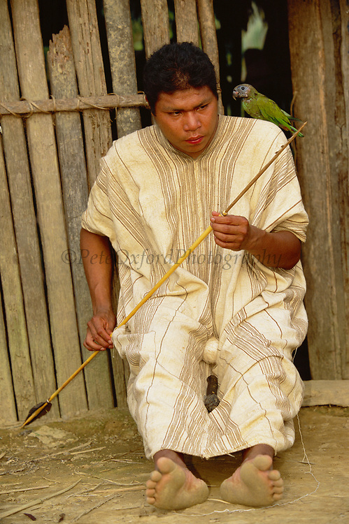 Machiguenga Indian making Arrow for fishing<br />Timpia Community, Lower Urubamba River<br />Amazon Rain Forest, PERU.  South America<br />Arrow made from macaw feathers