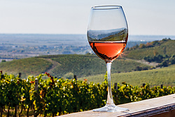 October 7, 2018 - Berehove, Zakarpattia Region, Ukraine - A glass of rose wine is pictured against the backdrop of rolling hills of a vineyard, Berehove, Zakarpattia Region, western Ukraine, October 7, 2018. Ukrinform. (Credit Image: © Serhiy Hudak/Ukrinform via ZUMA Wire)