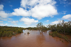 Wet season view of the Fitzroy River from Willare Bridge outside Derby.