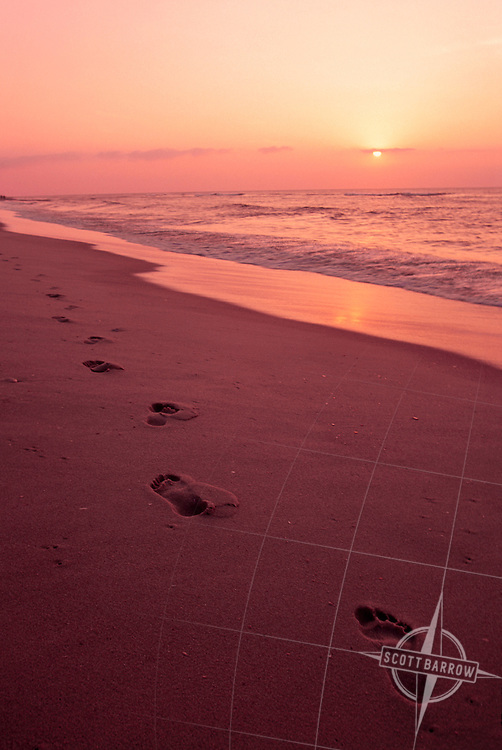Footprints in sand at beach.