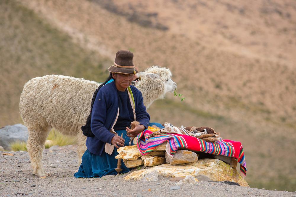 South America,Peru, Altiplano, native indian woman with alpaca