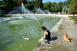 © Licensed to London News Pictures. 13/09/2016. London, UK. A man enjoys a paddle with his dogs underneath fountains at Battersea Park, South London, on what is expected to be one of the warmest September days on record.  Photo credit: Ben Cawthra/LNP