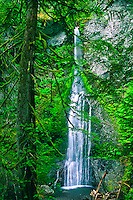 The 75 ft. Marymere Falls on Falls Creek.  Olympic National Park, Washington, USA.