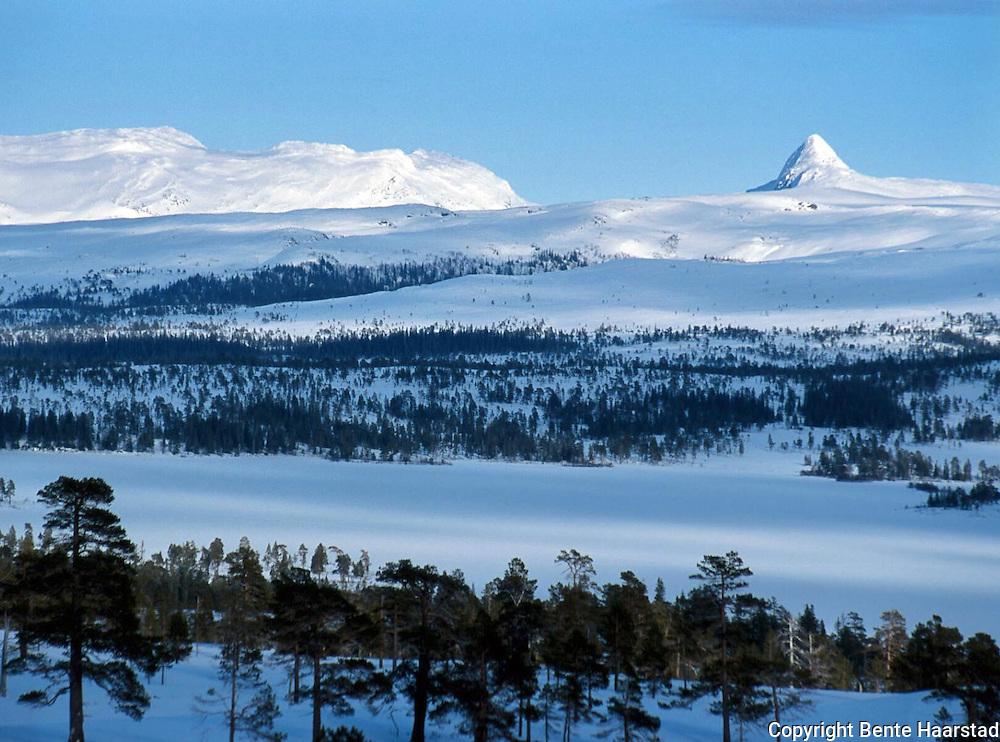 Tjohkele, eller Lurusneisa, er hellig fjell for sørsamene i Låarte Sijte/Luru reinbeitedistrikt. Midt i sørsamenes rike ligger Tjohkele, et hellig fjell som gikk i arv fra en generasjon reineiere til den neste. Tjohkele is a holy mountain for the sami people.