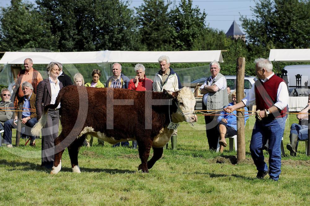 080913 dalfsen ned..Nationale Hereford keuring...Keurmeester was mevr. Hazsel Timmis (L) uit Engeland ..Tevens het 15 jarig jubileum van de Dutch Hereford Society...ffu press agency©2008frank uijlenbroek.....