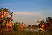 Tourists on boat on Okavango Delta, Botswana, Southern Africa