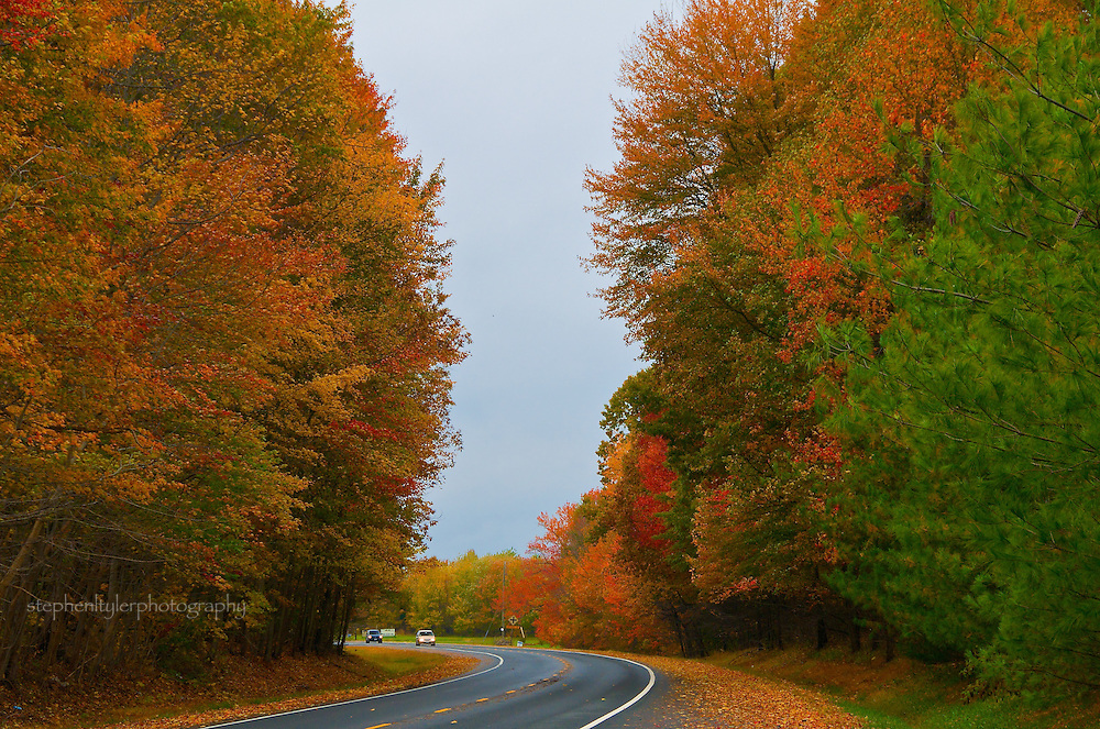 Autumn provides colorful foliage along a stretch of Maryland roadway.