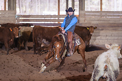 April 29 2017 - Minshall Farm Cutting 1, held at Minshall Farms, Hillsburgh Ontario. The event was put on by the Ontario Cutting Horse Association. Riding in the Open Class is Troy Donaldson on Xrey owned by Rosalee Munch.