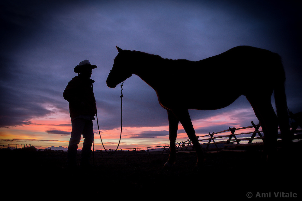 "Bryan Ulring, manager of the J Bar L ranch in the Centennial Valley of southern Montana, spends time with one of his horses after herding cattle on a chilly November day. The J Bar L ranch finish their cattle on grass, in contrast to the vast majority of ranches in the U.S. that send cattle to feedlots. The 2,000 head at J Bar L ""never go into a feedlot,"" said Bryan Ulring, manager of the ranch. He added that the J Bar L is one of the biggest grass finishers in the state. The Centennial Valley is an important wildlife corridor for elk, moose, antelope, deer, wolverines, grizzly bears, wolves and hundreds of bird species. The valley is largely owned by a handful of large ranches, which means their use of the land impacts the local environment. © Ami Vitale"