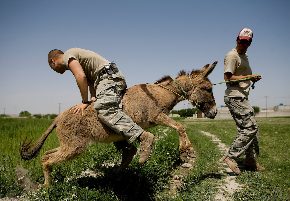 Sargeant Wesley Rinehart rides a donkey led by Sargeant Nathan Robertson of the 82nd Airborne's 1/508 Alpha Company, Third Platoon during a slow day near Sangin, Helmand province, Afghanistan on Saturday, April 14, 2007.