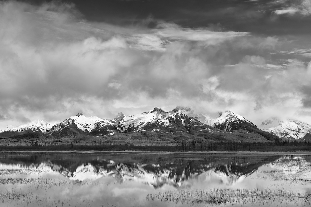 The snow capped Chugach Mountains of the Chugach National Forest are reflected in a pond in the wetlands of the Copper River Delta near Cordova in Southcentral Alaska. Spring. Morning.