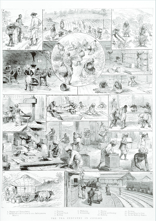 The Graphic. January 1888.<br />