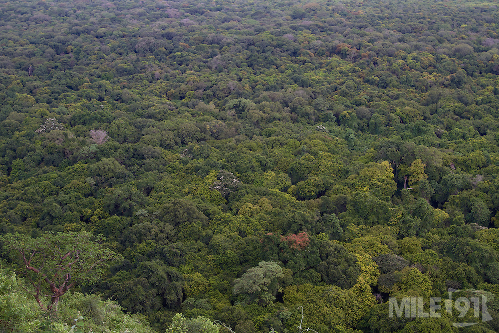 Looking down on a rainforest, Arba Minch, Ethiopia