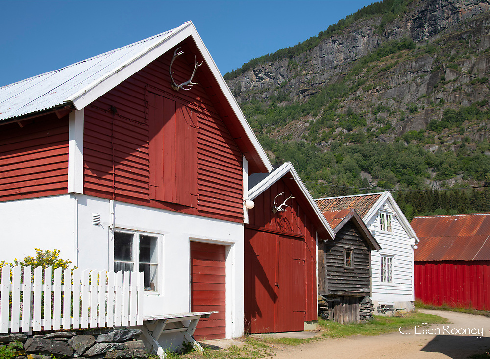 Colouful wooden buildings in Solvorn, Lustra Fjord, Vestlandet, Norway
