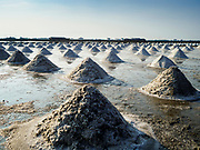 20 FEBRUARY 2019 - BAN LAEM, PHETCHABURI, THAILAND: Raked mounds of salt ready to be brought into the warehouase on one of the first days of the 2019 salt harvest in Ban Laem, Thailand. Ban Laem's salt fields are expanding because salt harvesters in Samut Sakhon and Samut Songkhram,  which are closer to Bangkok, are moving to Ban Laem as their land is turned into industrial parks.      PHOTO BY JACK KURTZ