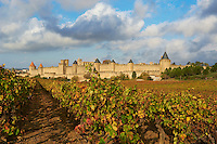 France, Aude (11), Carcassonne, cite medievale classee Patrimoine Mondial de l'UNESCO // France, Aude department, Medieval city of Carcassonne, World heritage of the UNESCO