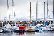 Yachts and sailing boats moored in the harbour at Tromso, Northern Norway