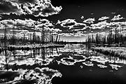 Cloud reflection in wetland<br />near Yellowknife<br />Northwest Territories<br />Canada