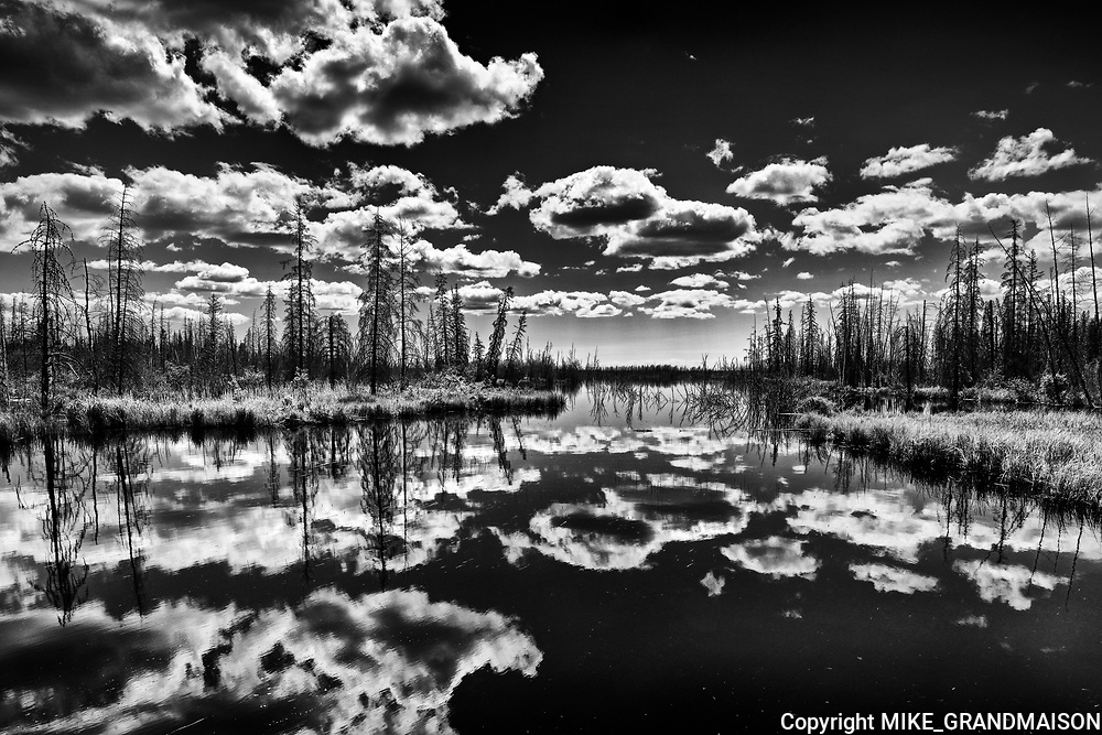 Cloud reflection in wetland<br />