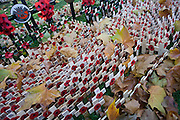 Crosses and poppies mark fallen Somerset regiments soldiers killed in action, seen during Remembrance weekend at Westminster Abbey, London.