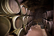 Oak barrels of Rioja wine maturing at Carlos San Pedro Bodega winery in medieval town of Laguardia in Basque country, Spain