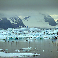 Antarctic Icescapes