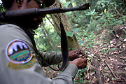 A ranger destroys a snare during a patrol. The forest rangers are employed by the Ministry of Environment but sponsored by Flora and Fauna International who pays them 75% of their salary and provides training and accommodation. They undertake regular patrols in to the Samkos Wildlife Sancturary which is part of the Cardamom Mountains Nature Reserve looking for illegal activites such as logging, poaching, land encroachment and the production of the illegal substance sassafras oil. The Cardamom Mountains and surrounding forests is the largest and most pristine area of intact forest in SE Asia. Covering an area of 2.5 million acres it became one of the last strong holds of a retreating Khmer Rouge. Their presence helped preserve the forest as no-one dared to venture inside. But with the Khmer Rouge gone, it faces new dangers from poachers, loggers and illegal drug factories. In charge of protecting this vast forest are a handful of rangers who's job it is to track down and arrest those who are helping to destroy this delicate habitat.