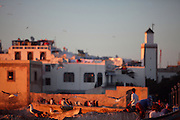 ESSAOUIRA, MOROCCO - MAY 11 : A general view of rooftop communities on May 11, 2009 in Essaouira, Morocco. People and seagulls enjoy sun and companionship high above the town lit by the warm light of the sunset. Essaouira, on the windswept Atlantic coast of Morocco, was re-built in the 18th century by French architect Theodore Cornut to the orders of Sultan Ben Abdullah. Surrounded by ramparts it is a charming small town now becoming more popular with tourists. (Photo by Manuel Cohen)