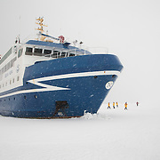 The Ocean Nova lets passengers off to walk on thick sea ice.