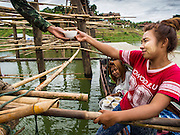 17 SEPTEMBER 2014 - SANGKHLA BURI, KANCHANABURI, THAILAND: A Mon woman uses a boat to bring desserts to Thai soldiers working on the Mon Bridge. The 2800 foot long (850 meters) Saphan Mon (Mon Bridge) spans the Song Kalia River. It is reportedly second longest wooden bridge in the world. The bridge was severely damaged during heavy rainfall in July 2013 when its 230 foot middle section  (70 meters) collapsed during flooding. Officially known as Uttamanusorn Bridge, the bridge has been used by people in Sangkhla Buri (also known as Sangkhlaburi) for 20 years. The bridge was was conceived by Luang Pho Uttama, the late abbot of of Wat Wang Wiwekaram, and was built by hand by Mon refugees from Myanmar (then Burma). The wooden bridge is one of the leading tourist attractions in Kanchanaburi province. The loss of the bridge has hurt the economy of the Mon community opposite Sangkhla Buri. The repair has taken far longer than expected. Thai Prime Minister General Prayuth Chan-ocha ordered an engineer unit of the Royal Thai Army to help the local Mon population repair the bridge. Local people said they hope the bridge is repaired by the end November, which is when the tourist season starts.    PHOTO BY JACK KURTZ
