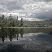 Near Tuolumne Meadows, Dog Lake is a small lake surrounded by woods rather than granite hills. Neaby the lake is Lembert Dome which overlooks the meadows and the Tuolumne River. The treeless granite dome has a sheer west face, 300 feet high, that becomes less steep on the other three sides.  It is a popular destination for hiking which brings many people also to Dog Lake...This is a digital combination of an infrared image and a visible color image.  The color picture is used to colorize the infrared image giving a foreign and new perspective.  Plants and trees reflect more infrared light and appear brighter in images while the sky reflects less making it darker.