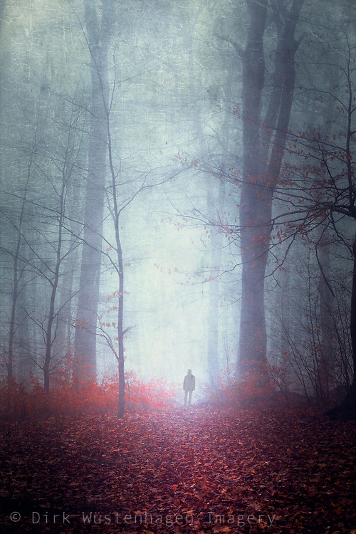 Man in misty forest - textured photograph