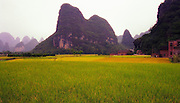 Farmland, Guangxi Provence, China