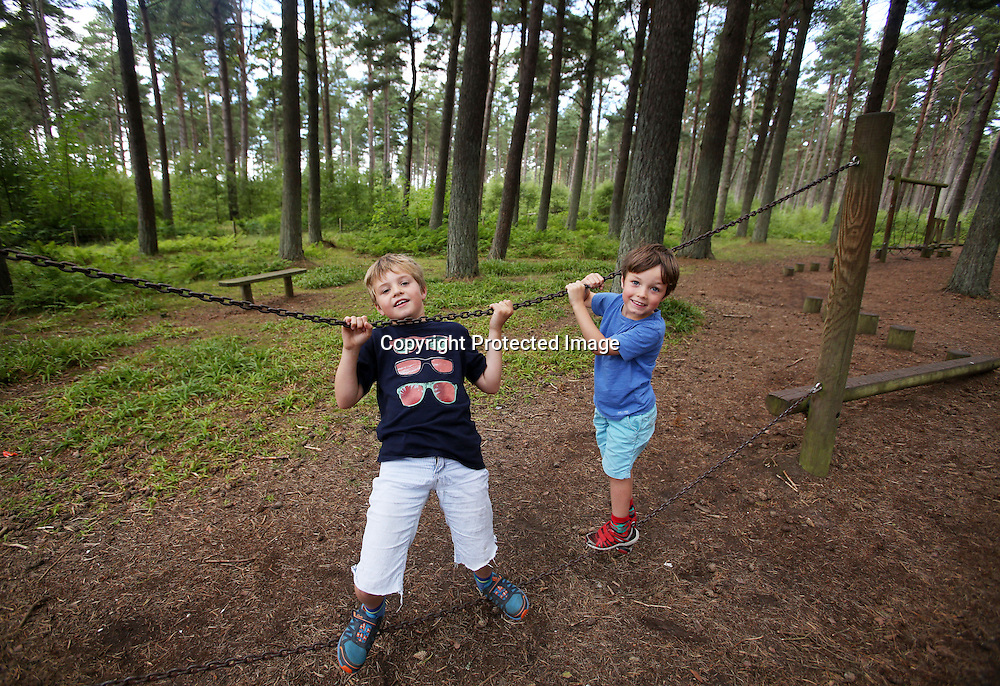 Childrens play ground Tentsmuir forest Fife. 2015.Photograph David Cheskin