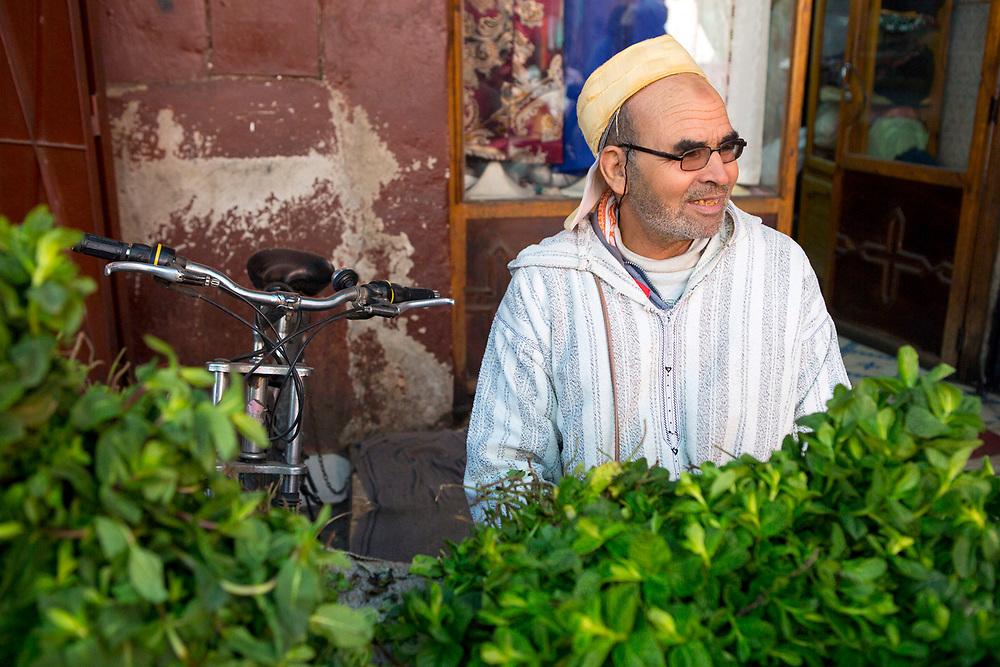 Market herb seller, Bab Doukkala, Marrakech, Southern Morocco, 2018–02-19.