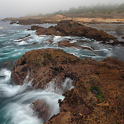 Rocky Shoreline In The Fog - Weston Beach - Point Lobos, CA