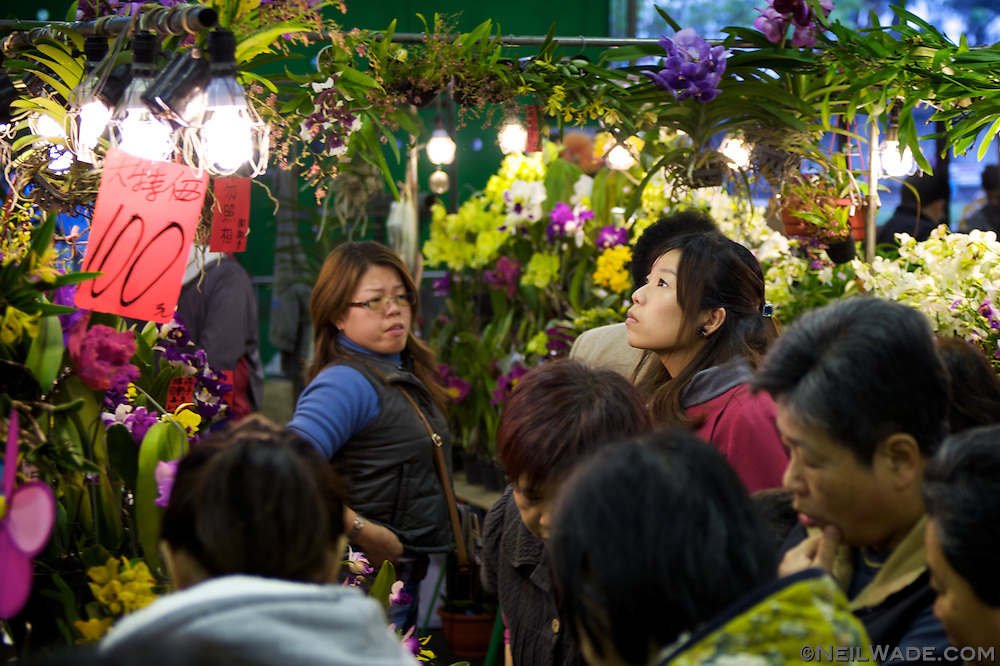 The Taipei Flower Market can get very busy with people looking for good deals on beautiful flowers.