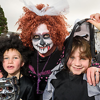 REPRO FREE<br /> Lesley McCarthy from Nohoval with George and Sophie McCarthy pictured at this years Kinsale Halloween parade.<br /> Picture. John Allen