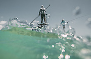 Fly Fising for Tarpon in the FL. KeysPhotography by Adam Alexander