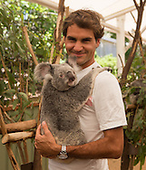 Tennis Profi Roger Federer (SUI) haelt Koala Tinkerbell in der Lone Pine Koala Sanctuary in Brisbane,Queensland,Australia,