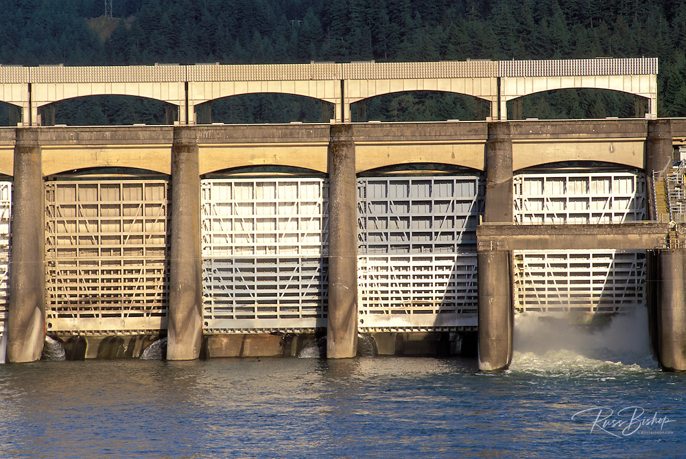 Afternoon light on the spillway at the Bonneville Dam, Columbia River Gorge National Scenic Area, Oregon USA
