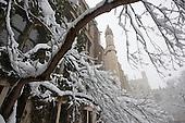 Snowy_UChicago
