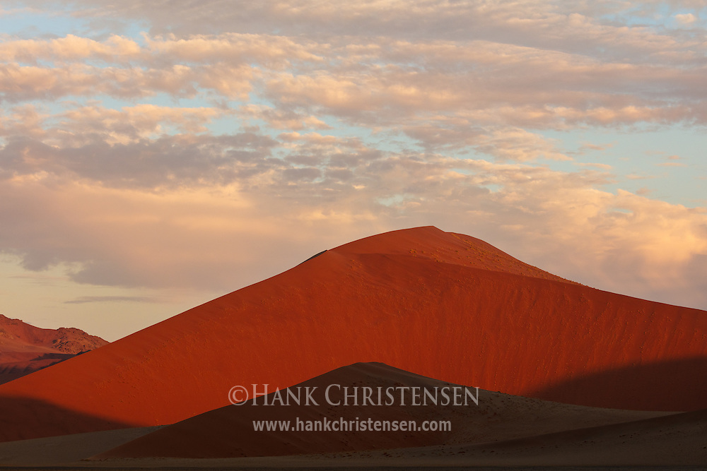 Namib-Naukluft National Park contains the tallest sand dunes in the world, topping at over 1000 feet.