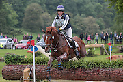 HHS DASSETT APPEAL ridden by Kate Rocher-Smith at Bramham International Horse Trials 2016 at  at Bramham Park, Bramham, United Kingdom on 11 June 2016. Photo by Mark P Doherty.