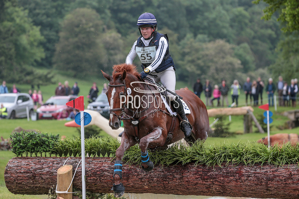 HHS DASSETT APPEAL ridden by Kate Rocher-Smith at Bramham International Horse Trials 2016 at  at Bramham Park, Bramham, United Kingdom on 11 June 2016. Photo by Mark P Doherty.